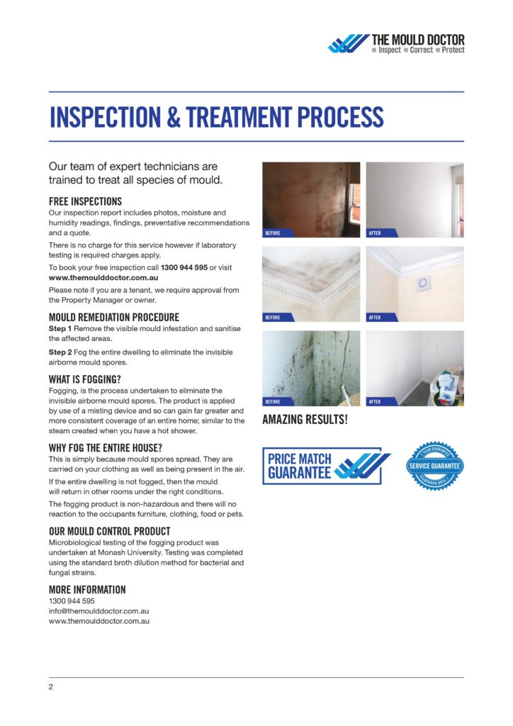 Inspection and Treatment Process